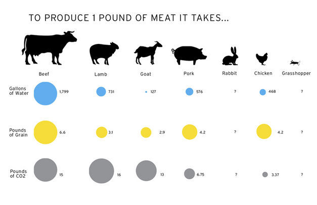 Environmental-Cost-Metrics-of-Meat-Production